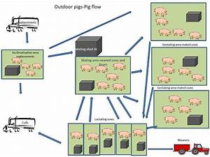Conceptual Layout Of An Outdoor Breeding Pig Farm