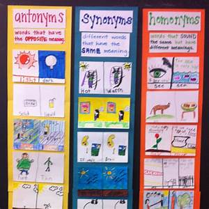 antonym synonym homonym practice students draw pairs on cards to create a classroom poster With synonym of ideas