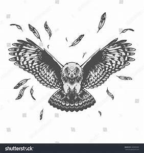Owl Illustration Stock Vector 346880483 - Shutterstock