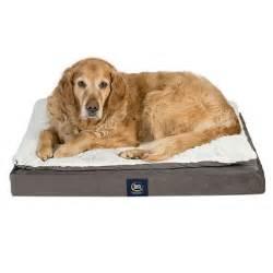 serta perfect sleeper ultra pillowtop orthopedic pet bed