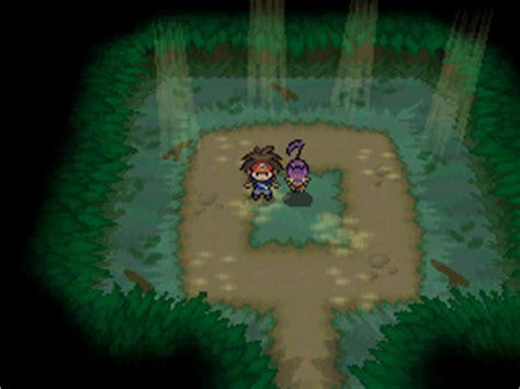 pokemon black  pokemon white  interactable pokemon