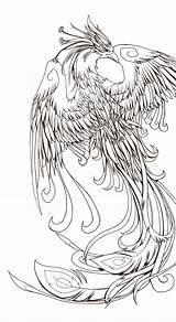 Phoenix Tattoo Drawing Feliz Drawings Japanese Outlines Fenix Delta Deviantart Tattoos sketch template