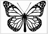 Butterfly Coloring Clipart Pages Butterflies Printable Drawing Clip Monarch 3d Line Print Fun Cliparts Drawings sketch template