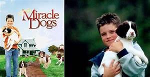 U0026quotmiracle Dogsu0026quot Celebrities Josh Hutcherson Movies Dogs