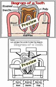 104 Best Images About Dental Health On Pinterest