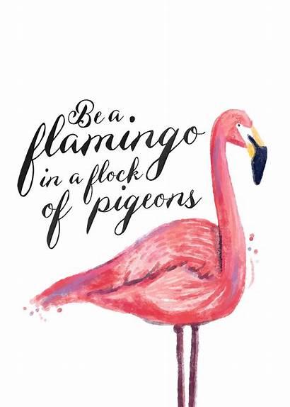 Flamingo Printable Wall Flamingos Pink Decor Looking