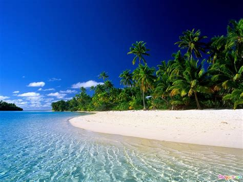 Beautiful Tropical Beach Desktop Beach