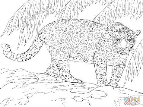 great jaguar coloring  super coloring vbs