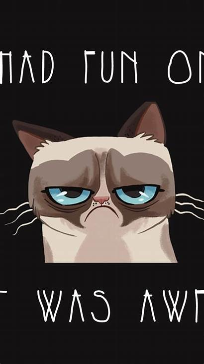 Funny Iphone Wallpapers Backgrounds Cat Cool 6s