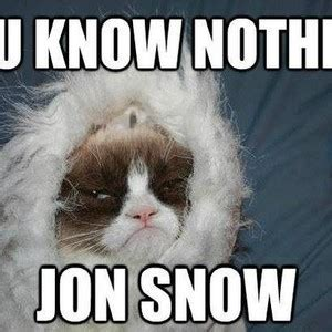 Grumpy Cat Snow Meme - grumpy cat tells jon snow off by trav2016 meme center