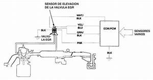 Egr Valve Diagnosis - Step By Step