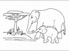 Malvorlagen Wildtiere Elefant, Löwe, Tiger, Reh