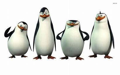 Madagascar Clip Cliparts Penguins Penguin Attribution Forget