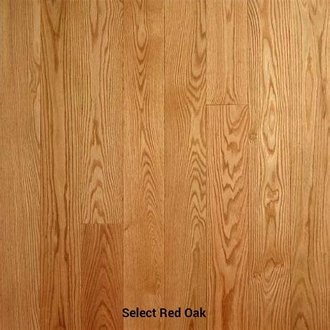 select wood floors 17 best images about red oak hardwood floors on pinterest red oak floors bristol and stains