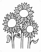 Sunflower Coloring Pages Adults Colouring Seeds Printable Fair County Approved Getdrawings Getcolorings Bill Drawing Template sketch template