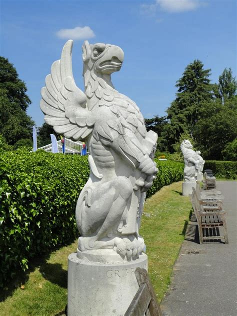 47 Best Griffins Images On Pinterest  Mythical Creatures