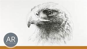 Kunst Bilder Zum Nachmalen : tiere zeichnen lernen tierskizzen tiere malen mappenkurs kunst youtube ~ Eleganceandgraceweddings.com Haus und Dekorationen