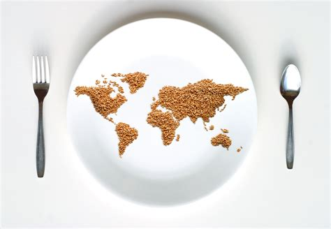 what does the word cuisine 3 innovative solutions to the global hunger epidemic