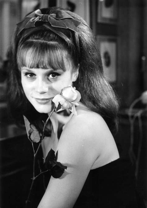 francoise dorleac actress 295 best fran 231 oise dorl 233 ac images on pinterest actresses