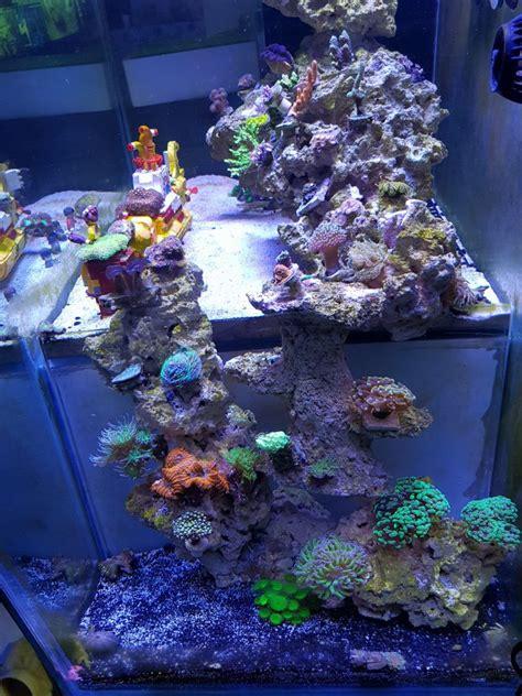 aquascape reef tank aquarium led lighting orphek