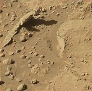 Mars And More : mars anomalies ufo sightings and more lizard found in mars curiosity photo sol 597 ~ A.2002-acura-tl-radio.info Haus und Dekorationen