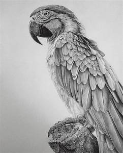 Pencil Drawings by an Artist Who Is Addicted to Detail ...