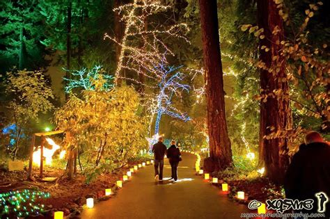 here are the best 13 places in oregon to see christmas