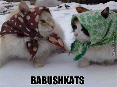 Russian Cat Meme - russian cat memes best collection of funny russian cat pictures