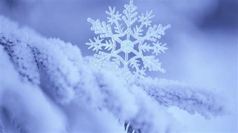 Wallpaper Snowflakes by Snowflake Wallpapers Wallpaper Cave