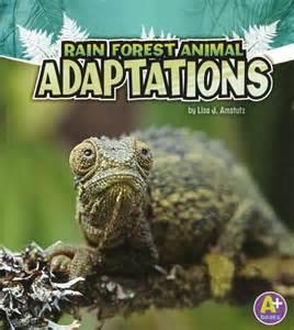 Rainforest Animal Adaptations