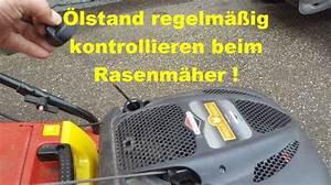 Sabo Rasenmäher ölwechsel : kawasaki archive s llner motorger te gmbh ~ A.2002-acura-tl-radio.info Haus und Dekorationen