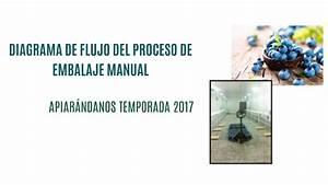 Diagrama De Flujo Del Proceso De Embalaje Manual By