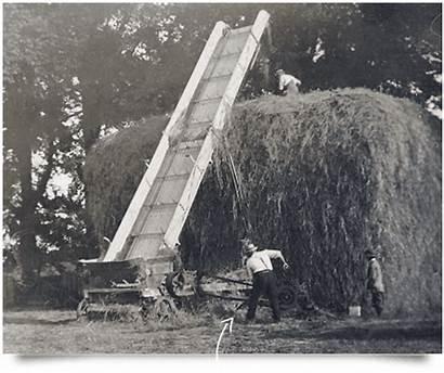Thomas Bakery Pullin Somerset Grandfather Kicked 1925