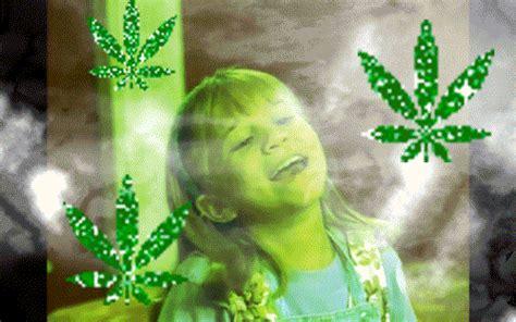 weed gif gif images