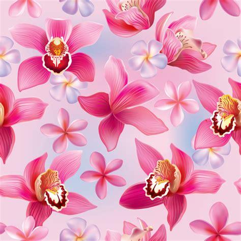 orchid  vector    vector