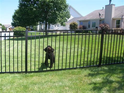 pet gate commercial aluminum fencing from fence depot