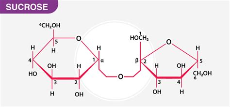 What Are Five Examples Of Non Reducing Sugars Chemistry