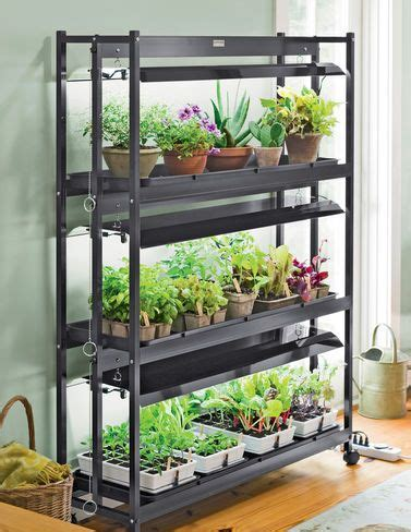 25 trending indoor vegetable gardening ideas on