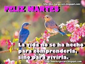 ¡ Feliz martes¡ Imágenes de pájaro Pajaros y flores