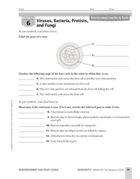 viruses worksheet worksheets ratchasima printable