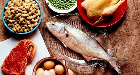 dont eat  protein  health