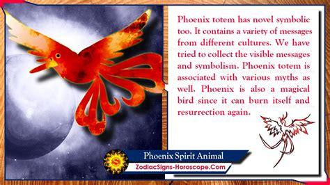 phoenix spirit animal totem meaning messages symbolism zsh