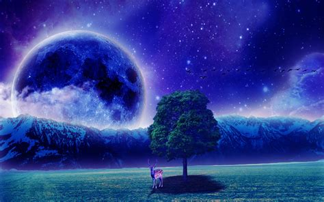 fantasy wallpapers pictures images