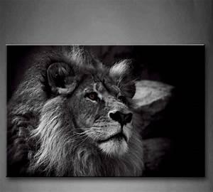 Tableau Lion Noir Et Blanc : photographie d 39 un lion en noir et blanc d co animaux ~ Dallasstarsshop.com Idées de Décoration
