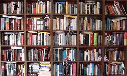 Bookshelf Archive Books Bookcase Internet Bookshelves Data