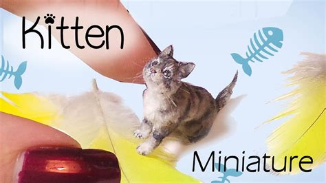 miniature cat tutorial realistic kitten dollhouse diy