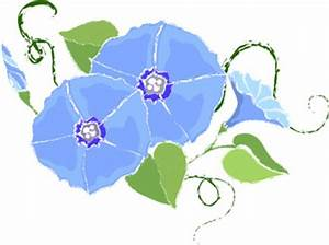 light blue flower clip art - Google Search | Morning Glory ...