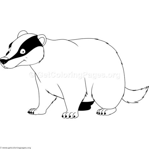 badger coloring pages getcoloringpagesorg