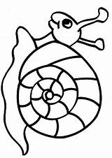Snail Coloring Printable Sheet Animal Snails Pages sketch template