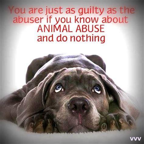 speak   animals images  pinterest